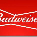 budweiser shadow logo